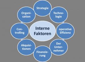 Interne Faktoren_U-Krise